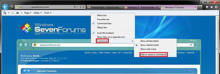 Internet Explorer Command Bar - Customize-add-remove_commands.jpg