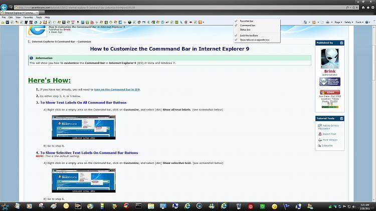 Internet Explorer Command Bar - Customize-no-customize.jpg