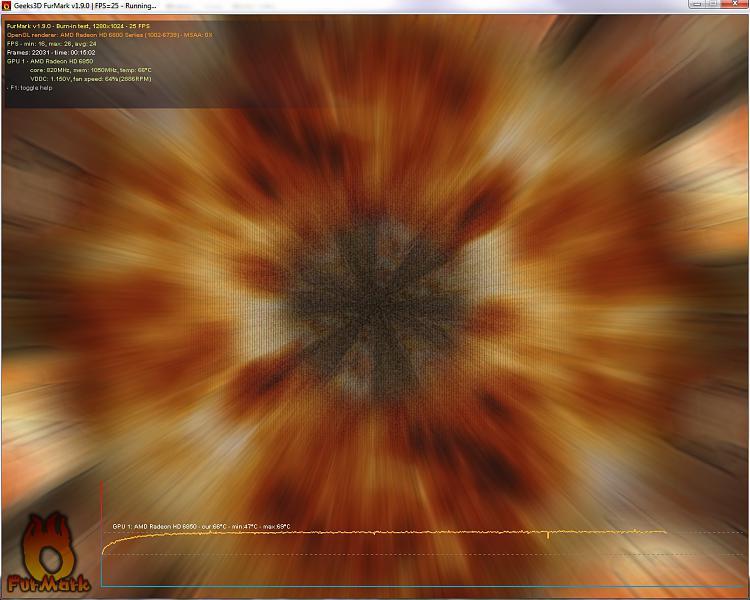 Video Card - Stress Test with Furmark-burn-.jpg