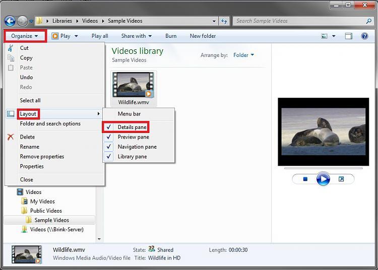 Details Pane - Turn On or Off-dp_on.jpg