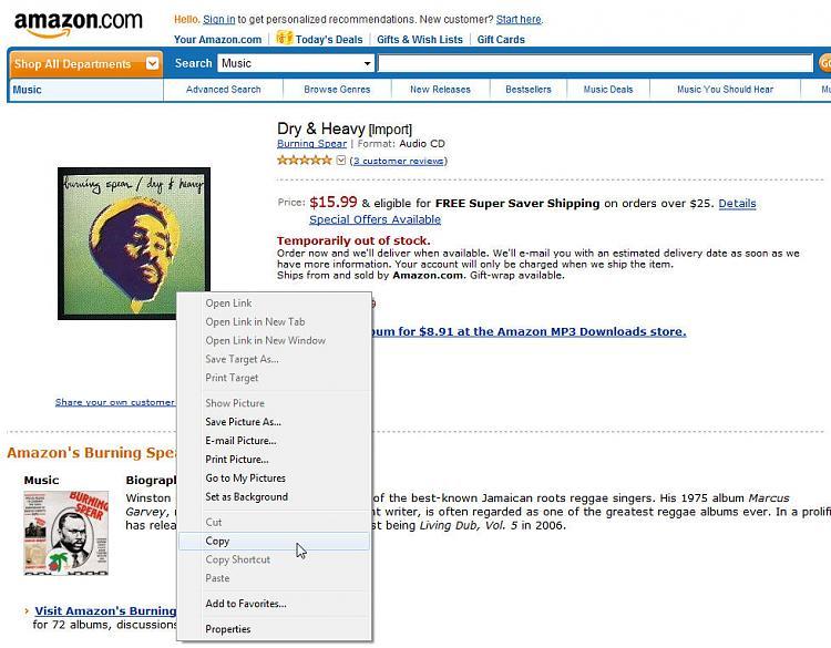 Windows Media Player Library Album Art-amaz_copy_album_art.jpg