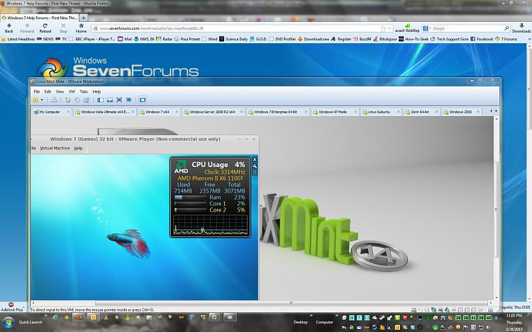 An Experiment with Windows 7 64 & Linux Mint 64.-super-mint.jpg