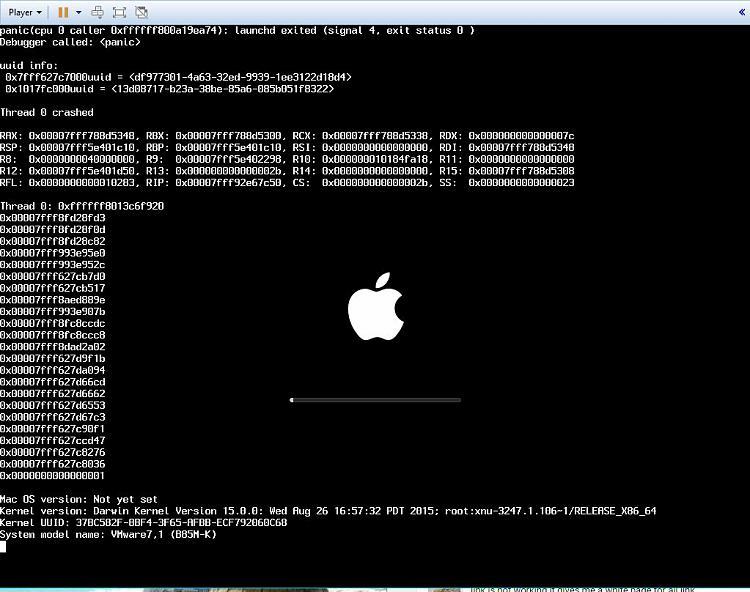 VMWare Error,EFI VMware Virtual SCSI Hard Drive(0.0)unsuccessful-clipboard01.jpg