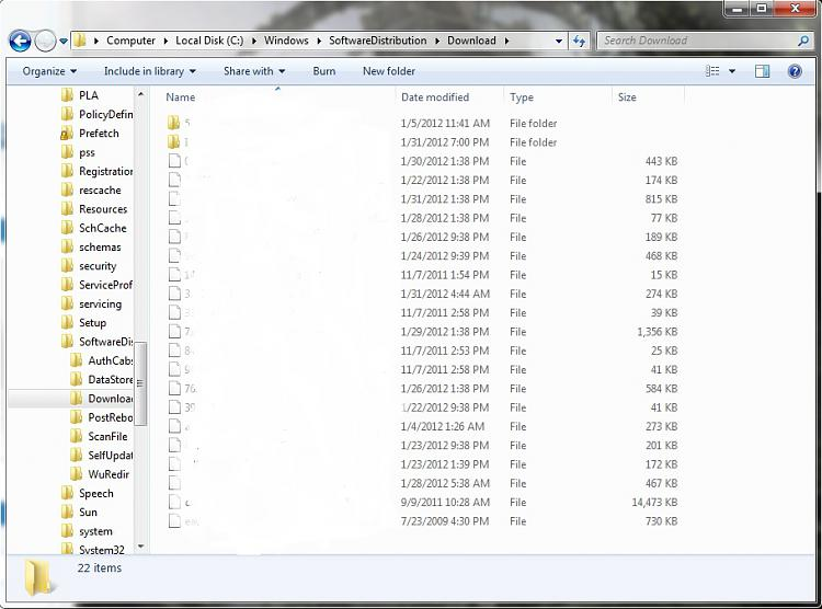 Clean of the Windows updates folders-c-2-.jpg