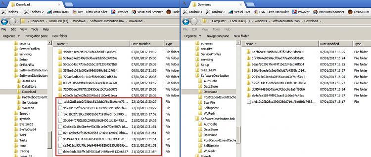 I've had it with Windows Update!-sofwaredistribution-download.jpg