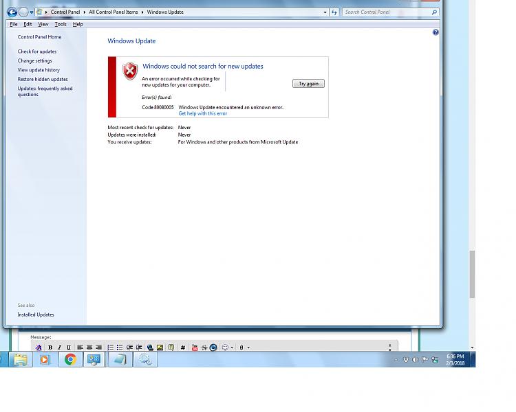 Windows 7 Professional x64 can't get updates-error_screen.png